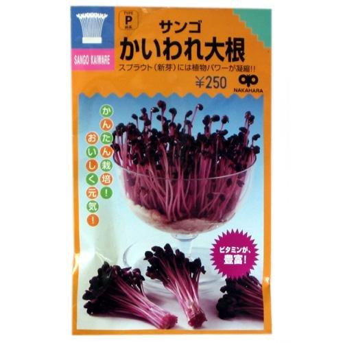 スプラウト 種 サンゴかいわれ大根 小袋(約35ml)