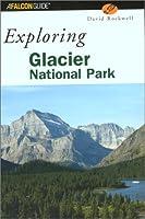 Falcon Exploring Glacier National Park