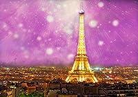 YouTube スタジオフォトブース小道具 SPGE378 LELEZ 8×6フィート ロマンチック パリ 街灯 夜間照明 背景 夢のような紫の流星 シャワー撮影