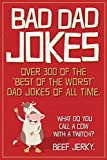 Bad Dad Jokes: Over 300 of the Best of the Worst Dad Jokes of All Time