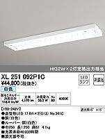 オーデリック XL251092P1C