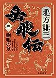 岳飛伝 3 嘶鳴の章 (集英社文庫) 画像