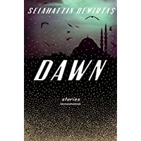 Dawn: Stories (English Edition)