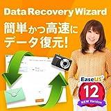 【無料体験版】 EaseUS Data Recovery Wizard Professional 【データ復元/データの誤削除、ストレージの誤フォーマットに安全、簡単に対応】 ダウンロード版