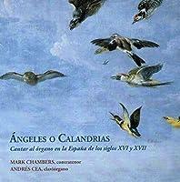 Mark Chambers (contratenor/ counter tenor) Andres Cea (claviorgano/ claviorgan) Con Barbara Sela (bajon/ bassoon) y Arna by Angeles o Calandrias (2013-01-01)
