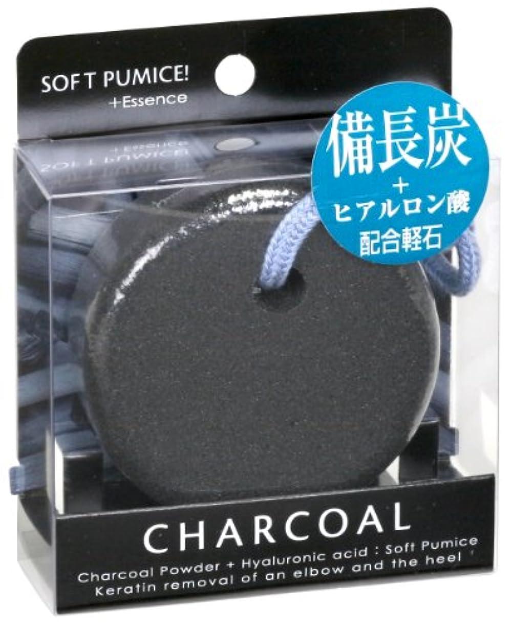 プラグ簡単な盲目ソフト 軽石 備長炭