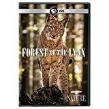 Nature: Forest of the Lynx [DVD] [Import]