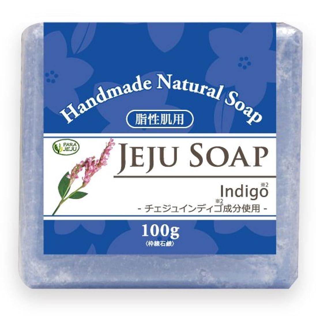 サバント適応する最終的にチェジュ インディゴ石鹸 100g