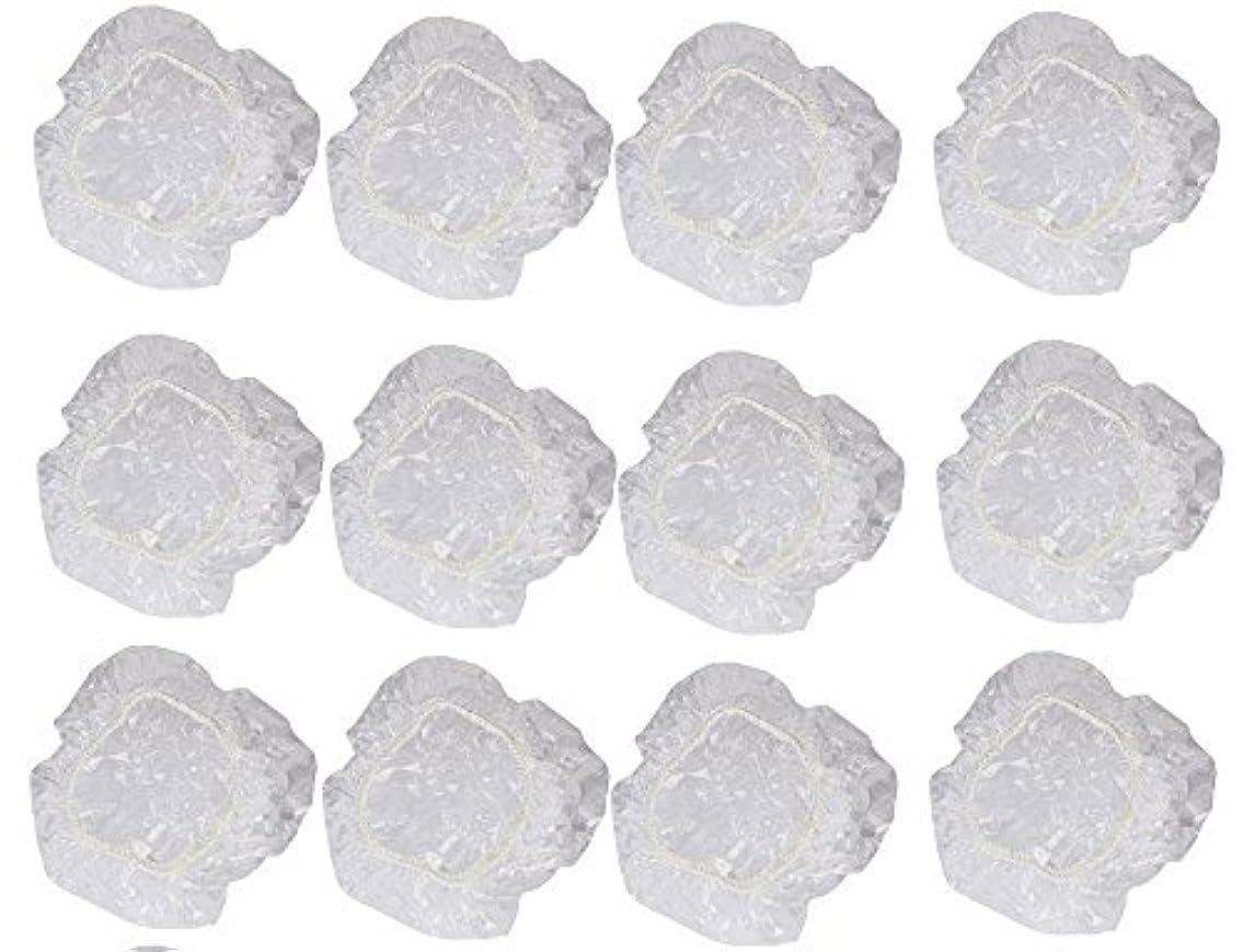 余剰シエスタ凍結イヤーカバー イヤーキャップ 12枚 6ペアセット ( ヘアカラー や水濡れ防止に保護に )