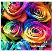【フラワーギフト】サプライズ ブーケ レインボーローズ 虹色のバラ10本の花束【誕生日プレゼント 結婚祝い 記念日】