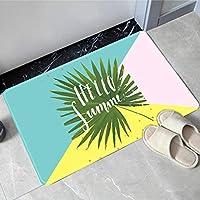 Lulunakeラグ 家庭用フロアマット ドアマット キッチン 浴室吸収フットパッド 浴室ドア 滑り止めマット 0.8X1.6m,10,0.8x1.6m