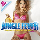 JUNGLE FEVER 2 ― FANTASTIC DUB PLATE MIX ―Produced by DJ CONTROLER from SPICY CHOCOLATE