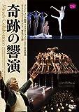 メータ&イスラエル・フィル/ベジャール・バレエ/東京バレエ団 「奇跡の響演」 「ペトルーシュカ」/「愛が私に語りかけるもの」/「春の祭典」 [DVD]