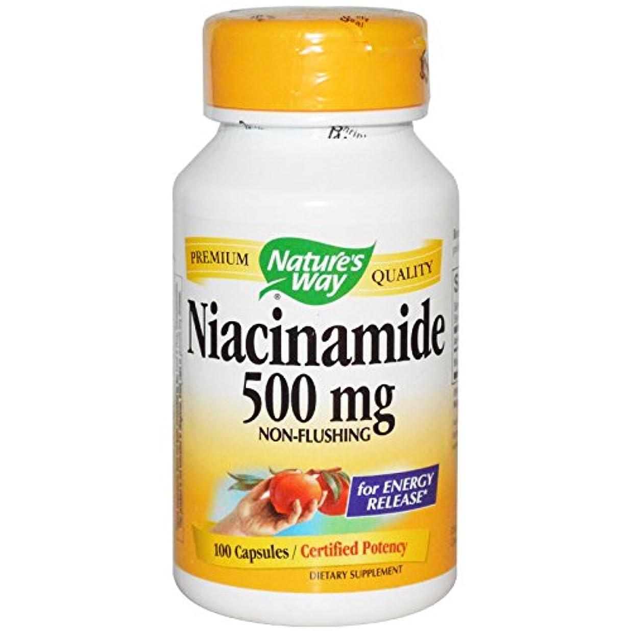 実証する違う稼ぐNature's Way, ナイアシンアミド, (ビタミンB3)500 mg, 100 カプセル [並行輸入品]