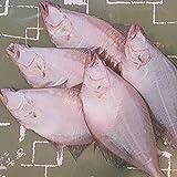 魚水島 新潟産 天然 宗八カレイ一夜干し 一尾300-350g 4枚入(ソウハチカレイ干物)