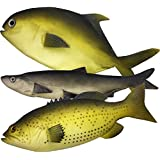3 Artificial Fish - 12 to 16 inches Large - Upgraded Premium Quality - Realistic Fake Fish - Best Looking Real Fish Perfect for Food Display or Food Photography Prop - Flexible Foam Material