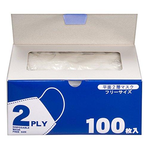 2層不織布タイプ 平面マスク 1セット 500枚:100枚×5箱 システムポリマー