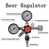 Best Kegerators - co2ビールregulator-homebrew KegeratorドラフトビールDispensing Single Review