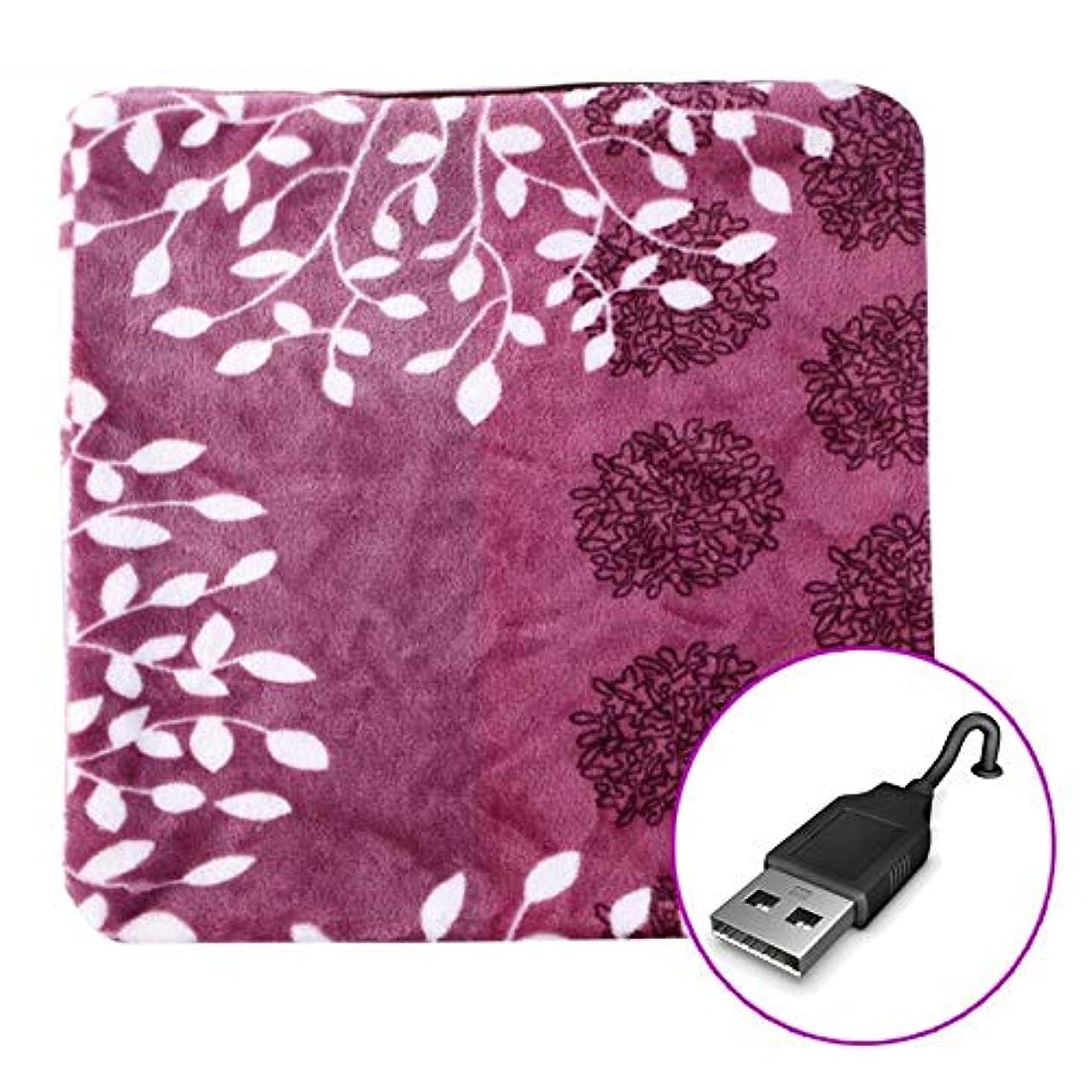 楽な案件溶かすLIFE 加熱クッション USB 45 × 45 センチメートルリムーバブルと洗える加熱パッド暖かいパッドオフィス電熱クッション電気加熱毛布クッション クッション 椅子