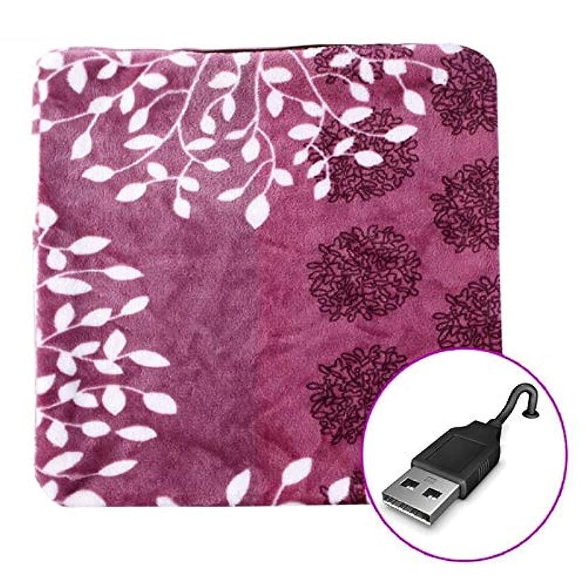 トラップハンディ組立LIFE 加熱クッション USB 45 × 45 センチメートルリムーバブルと洗える加熱パッド暖かいパッドオフィス電熱クッション電気加熱毛布クッション クッション 椅子