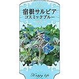 【1000枚】 AC 2型 宿根サルビアコスミックブルー SARUBIA-010 ポリポット用 ラベル 名札 育苗 アンドウケミカル カ施 代不