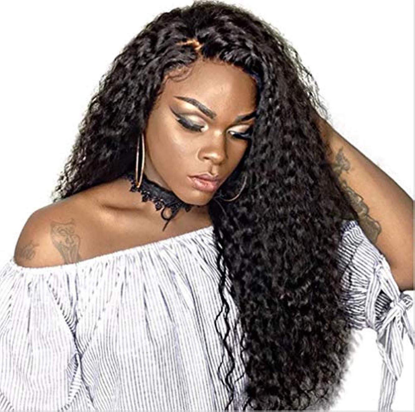 リズミカルな有料慣らす女性ウィッグボディウェーブ耐熱合成繊維ベビーヘア未処理人毛150%密度ブラック65cm