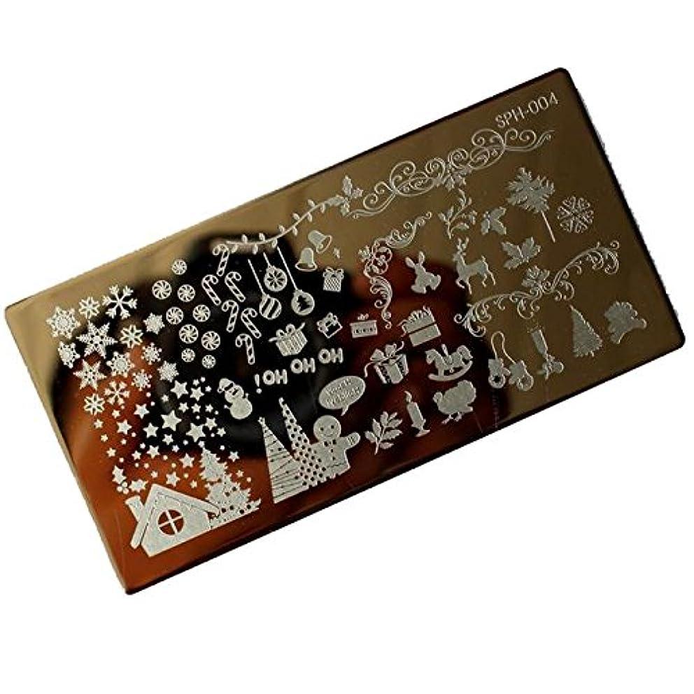 推定するミリメートル脳[ルテンズ] スタンピングプレートセット 花柄 クリスマス ネイルプレート ネイルアートツール ネイルプレート ネイルスタンパー ネイルスタンプ スタンプネイル ネイルデザイン用品