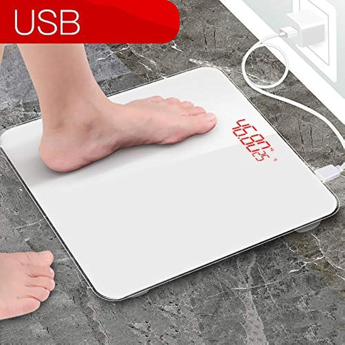 レポートを書く部分的にセクション体脂肪計、デジタル体重計、体重計、体組成計