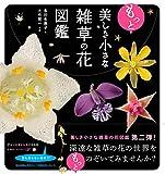 草花図鑑 - 花について知りたいのならこの図鑑、
