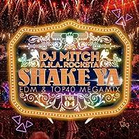 SHAKE YA♪ - EDM & TOP40 MEGAMIX - VOL.4 -