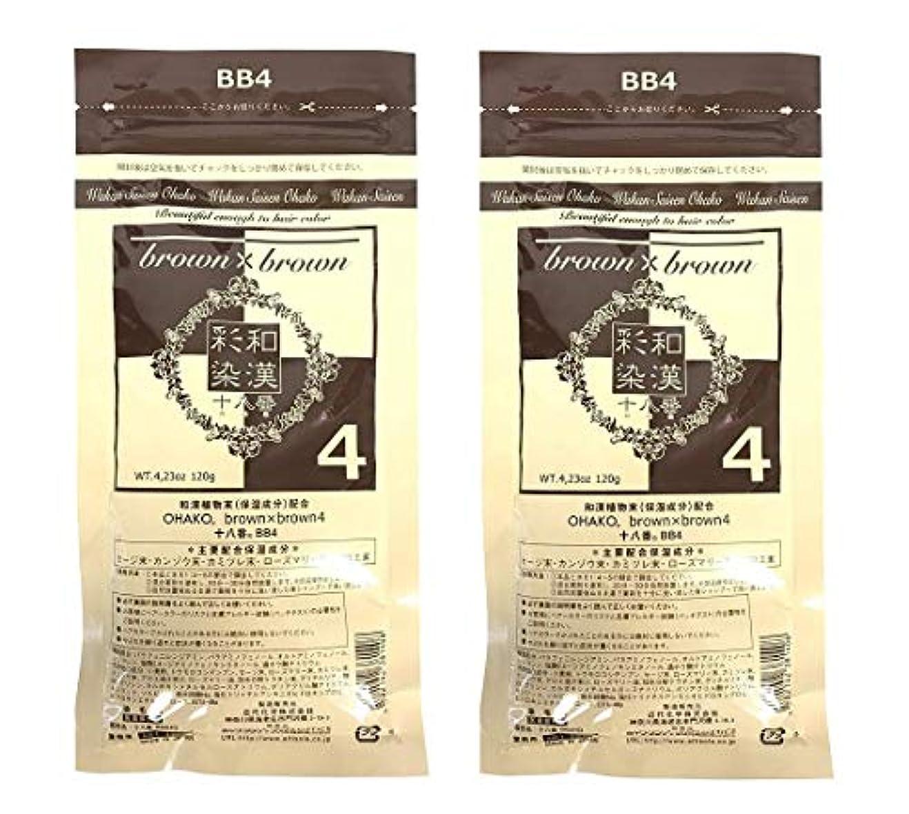 【2個セット】グランデックス 和漢彩染 十八番 120g BB4