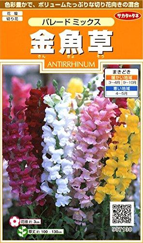 サカタのタネ 実咲花7130 金魚草 パレードミックス 00907130