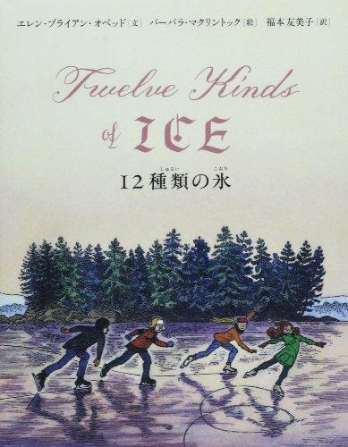 12種類の氷の詳細を見る