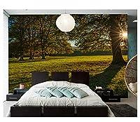 Mingld 草原の木光の光線自然壁紙リビングルームベッドルームテレビの背景キッチン-150X120Cm