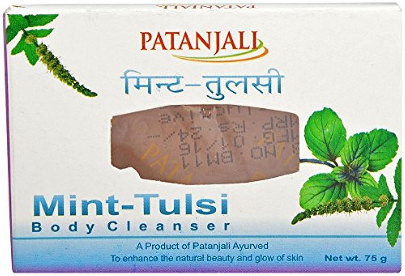 目立つパンダ熱心パタンジャリ ミント?ホーリーバジルソープ 75g×2個 アーユルヴェーダ インド産 Mint Tulsi Body Cleanser Ayurveda Patanjali India