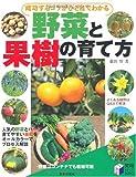 成功するコツがひと目でわかる野菜と果樹の育て方 (実用BEST BOOKS)