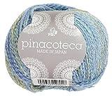 パピー 秋冬毛糸 pinacoteca ピナコテカ 40g 約130m Col.901 10玉セット