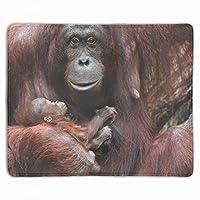 マウスパッド 防塵 耐久性 滑り止め 耐用 ゴム製裏面 軽量 携帯便利 母子供動物赤ちゃん動物類人猿 ノートパソコン オフィス用 ゲーム用 (300*250*3mm)