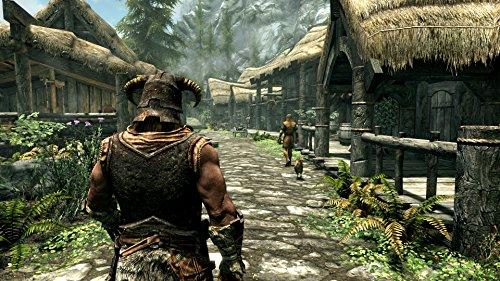 The Elder Scrolls V: Skyrim SPECIAL EDITION 【CEROレーティング「Z」】 - PS4