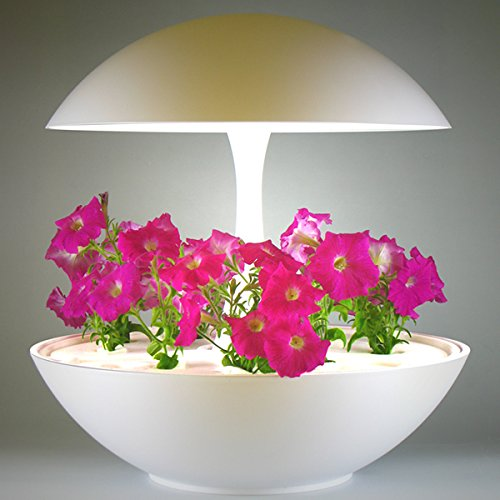 LED水耕栽培キット Akarina01 アカリーナ
