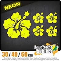 Hibiscus Flowerset - 3つのサイズで利用できます 15色 - ネオン+クロム! ステッカービニールオートバイ