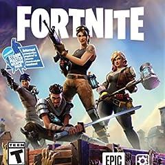Fortnite (輸入版:北米) - PS4