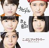 きっと私は/ナセバナル (初回生産限定盤B)(DVD付)
