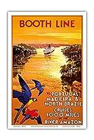 ポルトガル - マデイラ - 北ブラジル - ブースライン -  アマゾン川を1000マイル上流へクルーズ - ビンテージな遠洋定期船のポスター によって作成された ウォルター・トーマス c.1930s - アートポスター - 31cm x 46cm