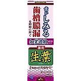 生葉(しょうよう) 知覚過敏症状予防タイプ 歯槽膿漏を防ぐ 薬用ハミガキ ハーブミント味 100g 【医薬部外品】