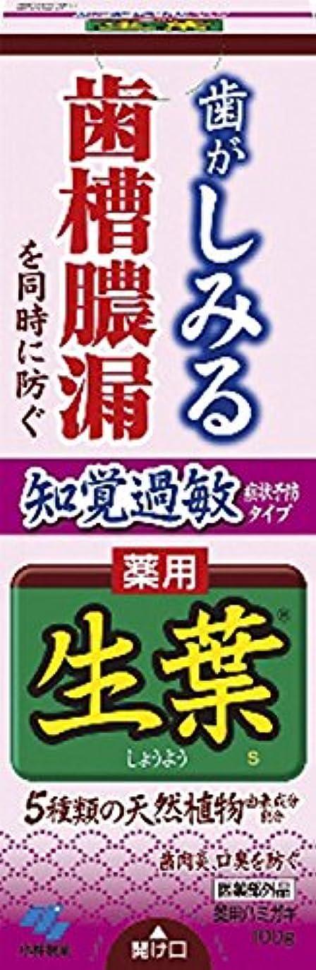 メンタースーパーマーケット主生葉(しょうよう) 知覚過敏症状予防タイプ 歯槽膿漏を防ぐ 薬用ハミガキ ハーブミント味 100g 【医薬部外品】