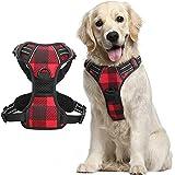 Rabbitgoo Dog Harness No Pull, Pet Harness with 2 Leash Clips, Adjustable Soft Padded Dog Vest Harnesses, Reflective No-Choke
