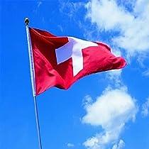 Hommy 国旗 国 スイス バナー 飾り 90*150cm