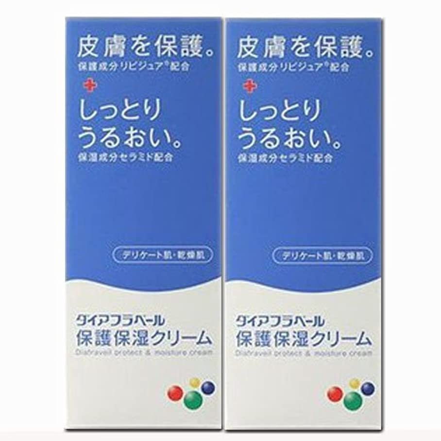 血まみれの電池警告する【2個】ダイアフラベール 保護保湿クリーム 60gx2個 (4987360200539-2)