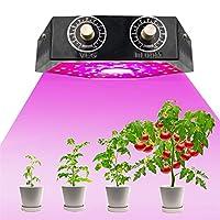 1000W LED COB植物成長ランプ、屋内野菜花苗用の調光可能なフルスペクトルデュアルチップ植物育成ライト